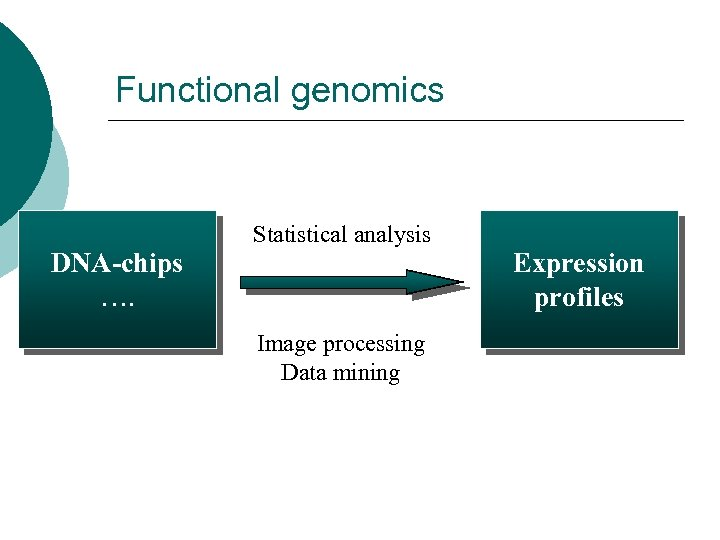 Functional genomics Statistical analysis DNA-chips …. Expression profiles Image processing Data mining