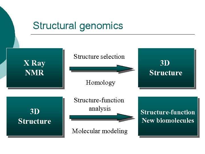 Structural genomics X Ray NMR Structure selection 3 D Structure Homology 3 D Structure-function