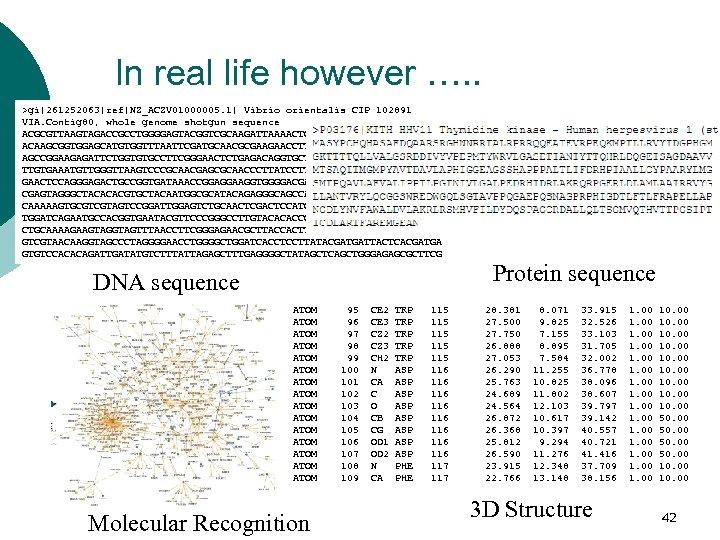 In real life however …. . >gi|261252063|ref|NZ_ACZV 01000005. 1| Vibrio orientalis CIP 102891 VIA.