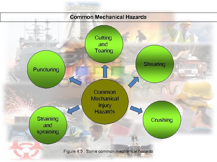 Common Mechanical Hazards Cutting and Tearing Shearing Puncturing Common Mechanical Injury Hazards Straining and