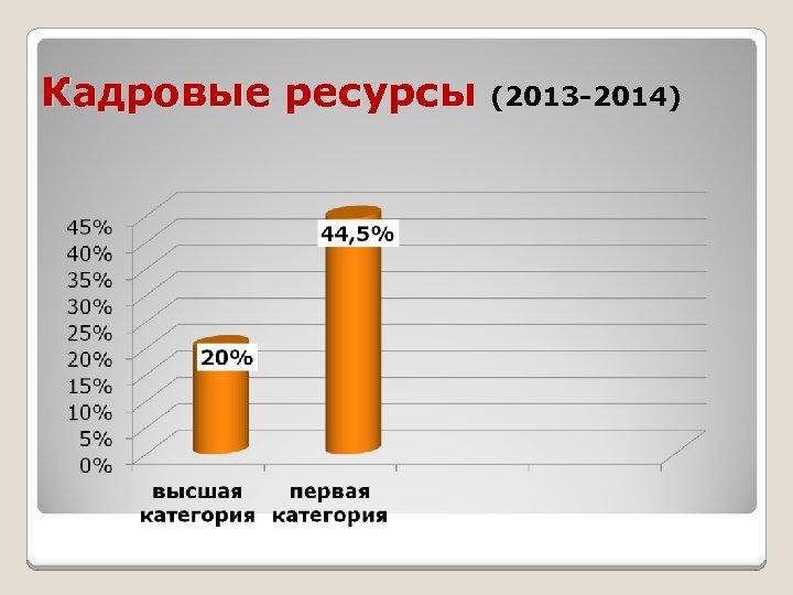 Кадровые ресурсы (2013 -2014)