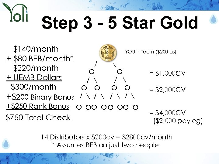 Step 3 - 5 Star Gold $140/month YOU + Team ($200 as) + $80