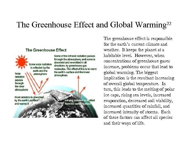The Greenhouse Effect and Global Warming 22 The greenhouse effect is responsible for the