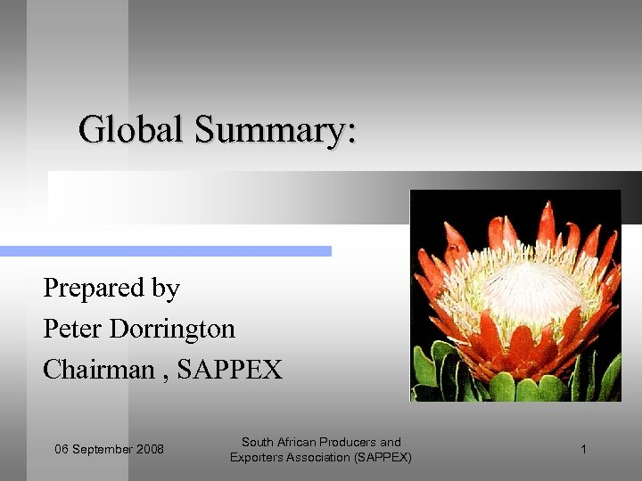 Global Summary: Prepared by Peter Dorrington Chairman , SAPPEX 06 September 2008 South African