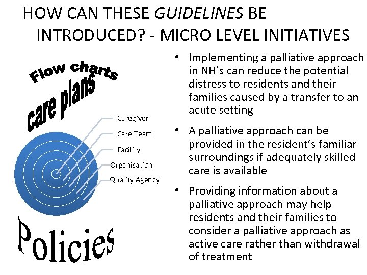 HOW CAN THESE GUIDELINES BE INTRODUCED? - MICRO LEVEL INITIATIVES Caregiver Care Team Facility