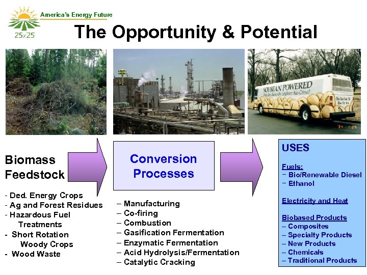 America's Energy Future The Opportunity & Potential Biomass Feedstock - Ded. Energy Crops -