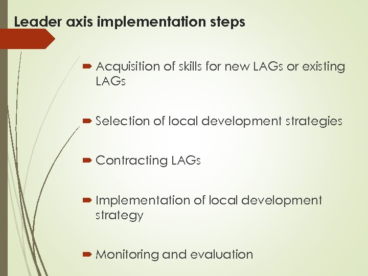 Leader axis implementation steps Acquisition of skills for new LAGs or existing LAGs Selection