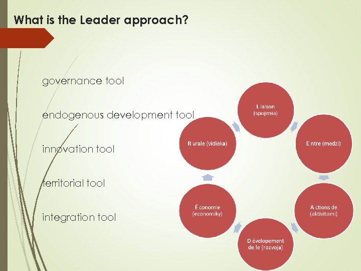 What is the Leader approach? governance tool endogenous development tool innovation tool territorial tool