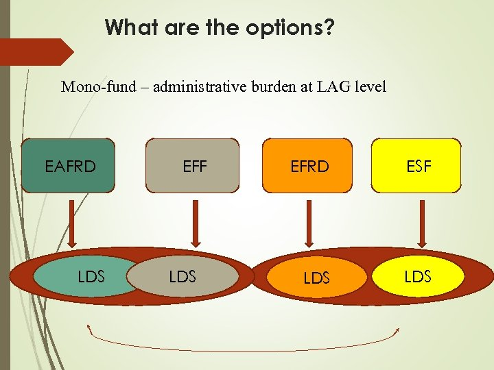 What are the options? Mono-fund – administrative burden at LAG level EAFRD LDS EFF