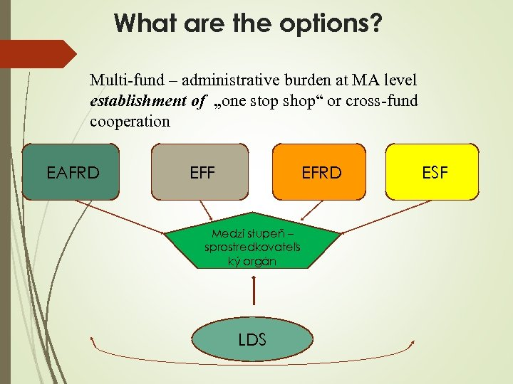 """What are the options? Multi-fund – administrative burden at MA level establishment of """"one"""