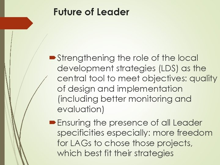 Future of Leader Strengthening the role of the local development strategies (LDS) as the