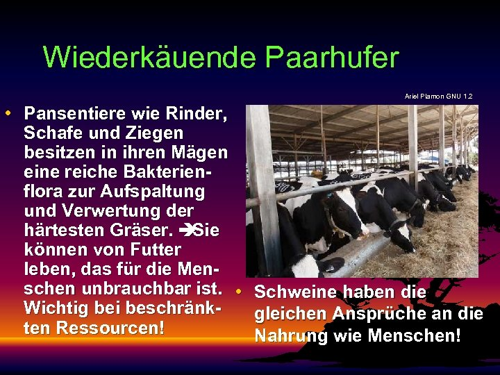 Wiederkäuende Paarhufer Ariel Plamon GNU 1. 2 • Pansentiere wie Rinder, Schafe und Ziegen