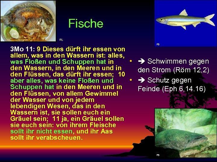Fische RL 3 Mo 11: 9 Dieses dürft ihr essen von allem, was in