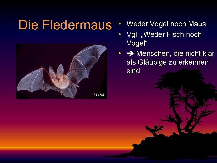"""Die Fledermaus FB / US • Weder Vogel noch Maus • Vgl. """"Weder Fisch"""
