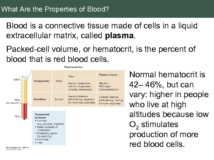 What Are the Properties of Blood? Blood is a connective tissue made of cells