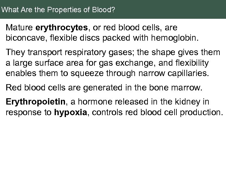 What Are the Properties of Blood? Mature erythrocytes, or red blood cells, are biconcave,