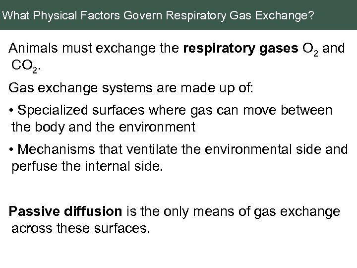 What Physical Factors Govern Respiratory Gas Exchange? Animals must exchange the respiratory gases O