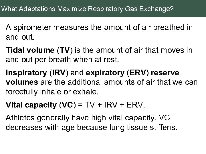 What Adaptations Maximize Respiratory Gas Exchange? A spirometer measures the amount of air breathed