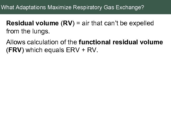 What Adaptations Maximize Respiratory Gas Exchange? Residual volume (RV) = air that can't be