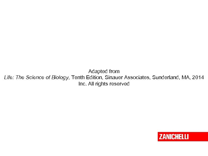 Adapted from Life: The Science of Biology, Tenth Edition, Sinauer Associates, Sunderland, MA, 2014