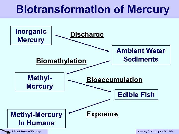 Biotransformation of Mercury Inorganic Mercury Discharge Biomethylation Methyl. Mercury Ambient Water Sediments Bioaccumulation Edible