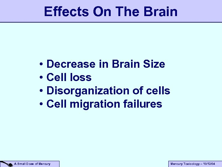 Effects On The Brain • Decrease in Brain Size • Cell loss • Disorganization