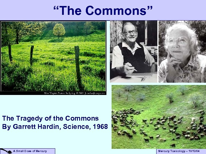 """The Commons"" The Tragedy of the Commons By Garrett Hardin, Science, 1968 A Small"