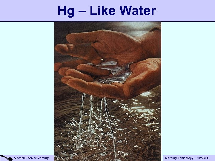 Hg – Like Water A Small Dose of Mercury Toxicology – 10/13/04