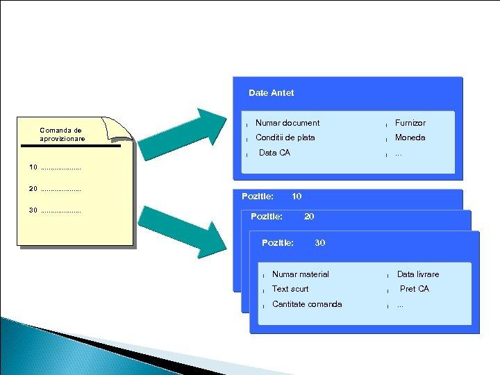 Continutul comenzii de aprovizionare Date Antet Comanda de aprovizionare l Numar document l Furnizor