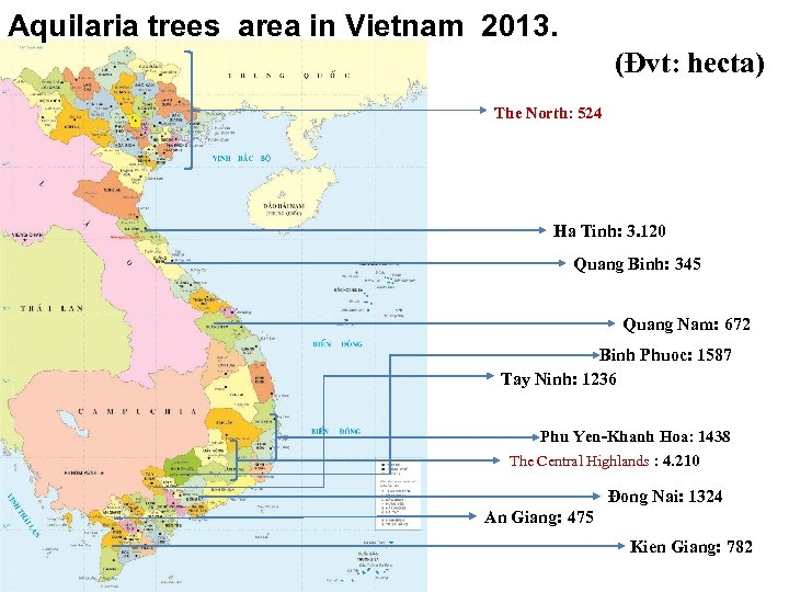 Aquilaria trees area in Vietnam 2013. (Đvt: hecta) The North: 524 Ha Tinh: 3.