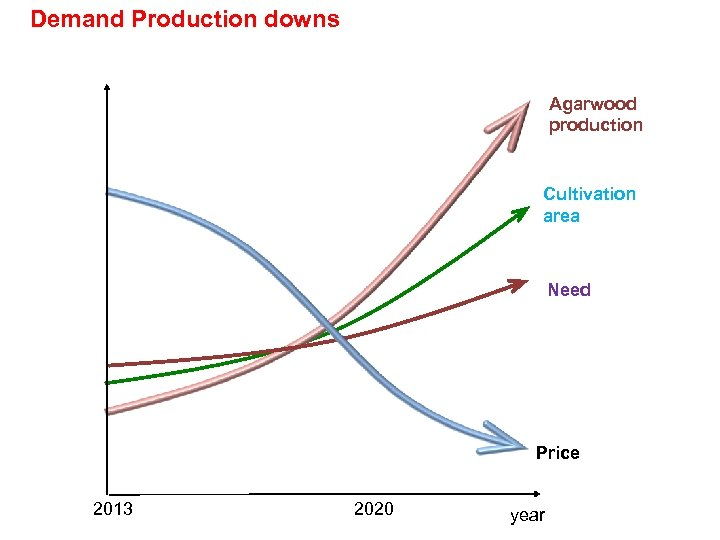 Demand Production downs Agarwood production Cultivation area Need Price 2013 2020 year