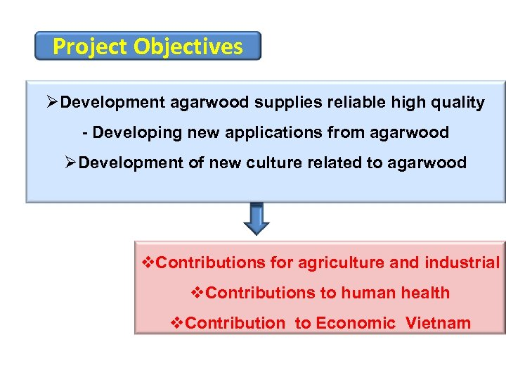 Project Objectives ØDevelopment agarwood supplies reliable high quality - Developing new applications from agarwood