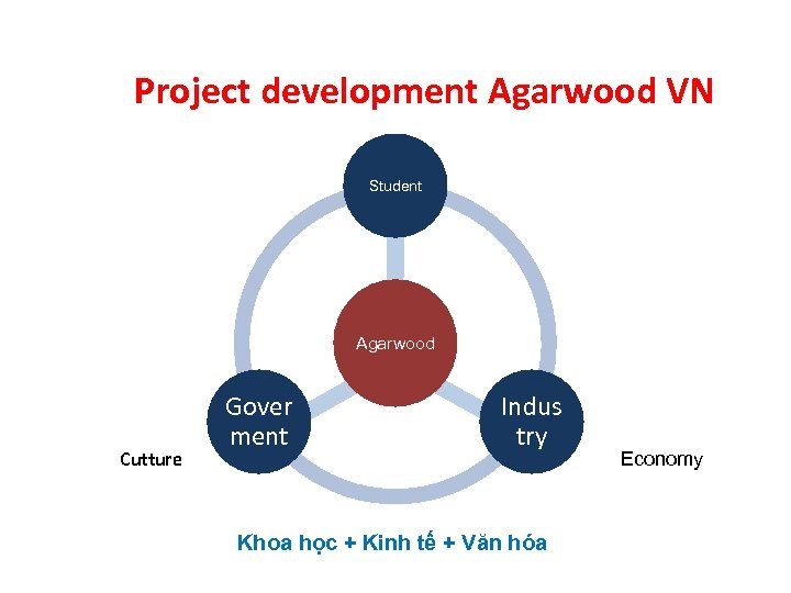 Project development Agarwood VN Student Agarwood Cutture Gover ment Indus try Khoa học +