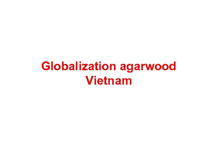 Globalization agarwood Vietnam