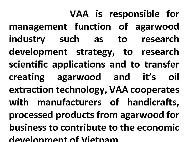 VAA is responsible for management function of agarwood industry such as to research development
