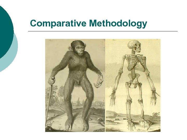 Comparative Methodology
