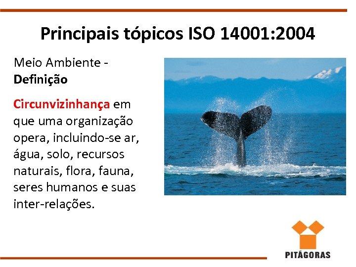 Principais tópicos ISO 14001: 2004 Meio Ambiente Definição Circunvizinhança em que uma organização opera,