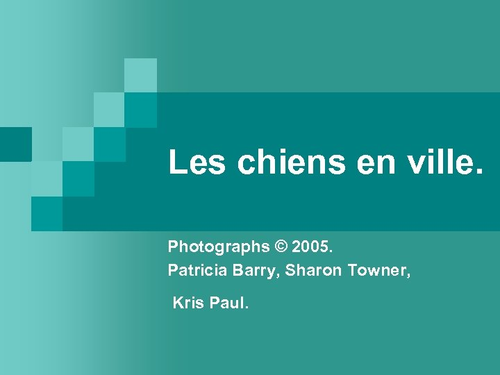 Les chiens en ville. Photographs © 2005. Patricia Barry, Sharon Towner, Kris Paul.