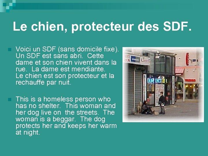 Le chien, protecteur des SDF. n Voici un SDF (sans domicile fixe). Un SDF