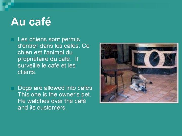 Au café n Les chiens sont permis d'entrer dans les cafés. Ce chien est