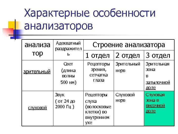 Характерные особенности анализаторов анализа тор Адекватный раздражител ь зрительный Свет (длина волны 500 нм)
