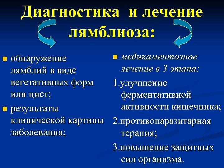 Диагностика и лечение лямблиоза: n медикаментозное обнаружение лечение в 3 этапа: лямблий в виде