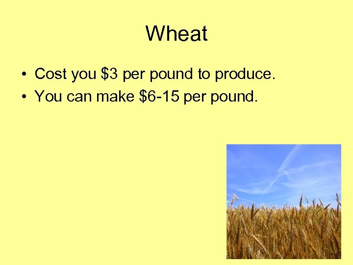 Wheat • Cost you $3 per pound to produce. • You can make $6