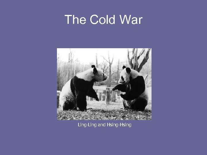 The Cold War Ling-Ling and Hsing-Hsing