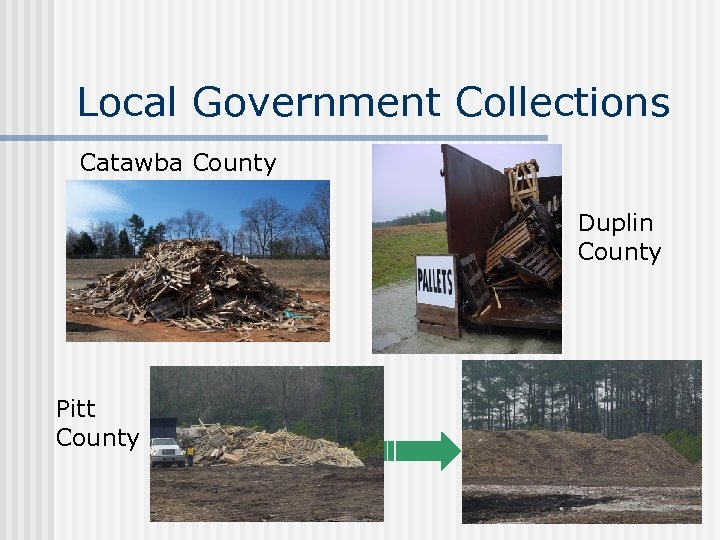 Local Government Collections Catawba County Duplin County Pitt County