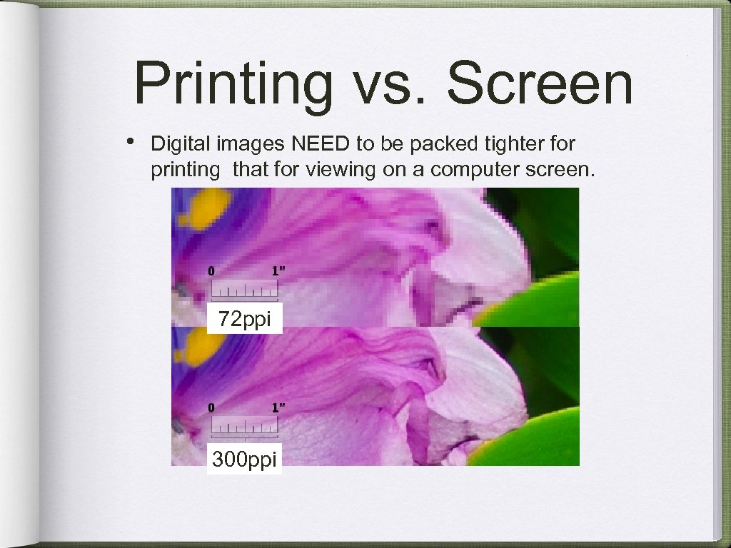Printing vs. Screen • Digital images NEED to be packed tighter for printing that