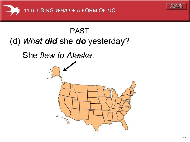 11 -6 USING WHAT + A FORM OF DO PAST (d) What did she
