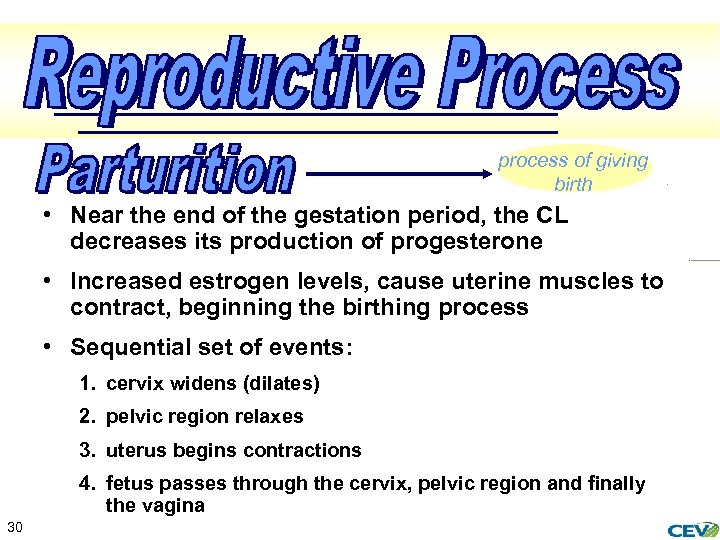 process of giving birth • Near the end of the gestation period, the CL