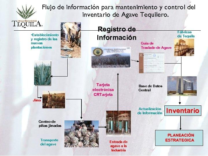 Flujo de información para mantenimiento y control del inventario de Agave Tequilero. • Establecimiento
