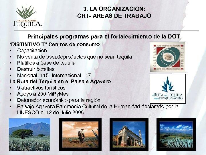 3. LA ORGANIZACIÓN: CRT- AREAS DE TRABAJO Principales programas para el fortalecimiento de la